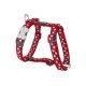 Red Dingo Harness Design Stars