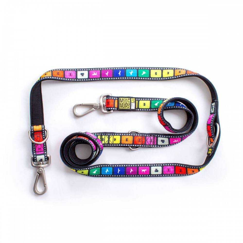 Max & Molly Movie Multifunctional Leash