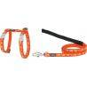 Red Dingo Cat Harness & Lead Combo Design Breezy Love