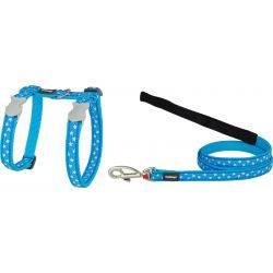 Red Dingo Cat Harness & Lead Combo Design Daisy Chain