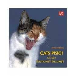 Pisici din București