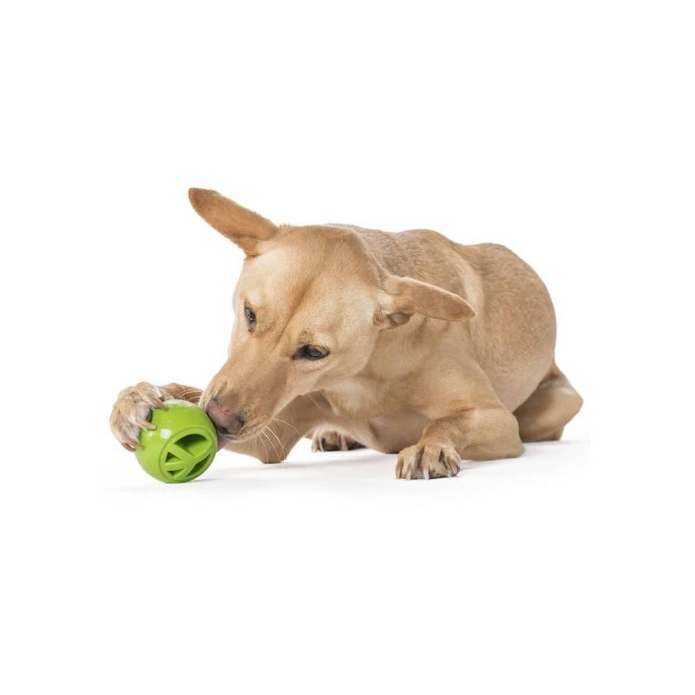 Planet Dog Orbee-Tuff Nooks