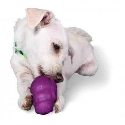 PetSafe Bussy Buddy Veveriţă