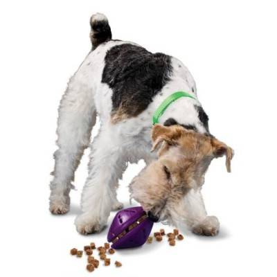 PetSafe Busy Buddy Twist 'n Treat