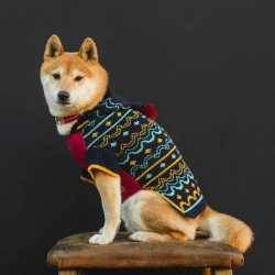 Hiro + Wolf Margate Dog Jumper