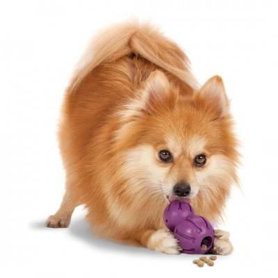 PetSafe Busy Buddy Waggle jucărie flexibilă de scuturat / distribuitor de biscuiți
