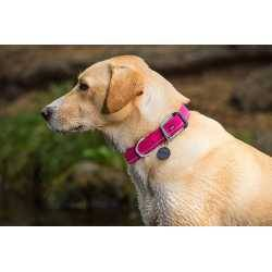 Headwater Collar