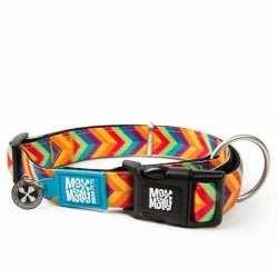 Max & Molly Summertime. Dog Collar
