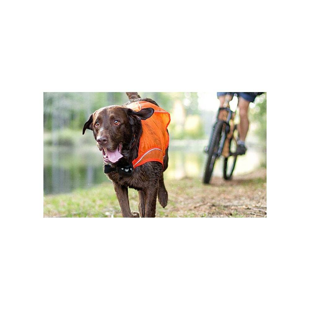 Kurgo Reflect and Protect Active Dog Vest