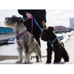 DOG Copenhagen Comfort Walk Air™ Harness