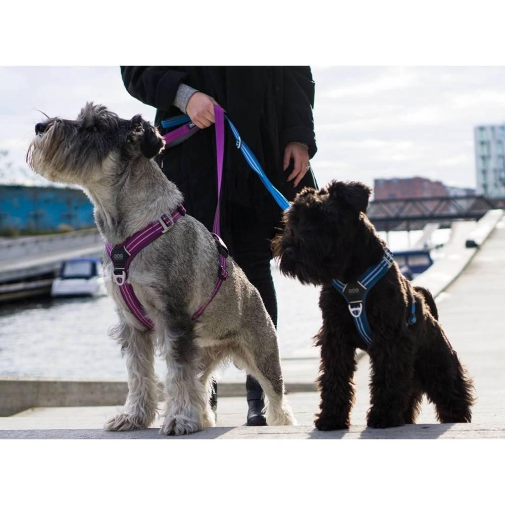DOG Copenhagen Comfort Walk Air™ Ham Căței