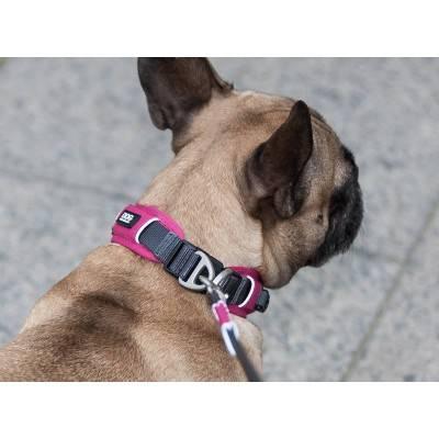 DOG Copenhagen Urban Explorer™ Zgardă Căței