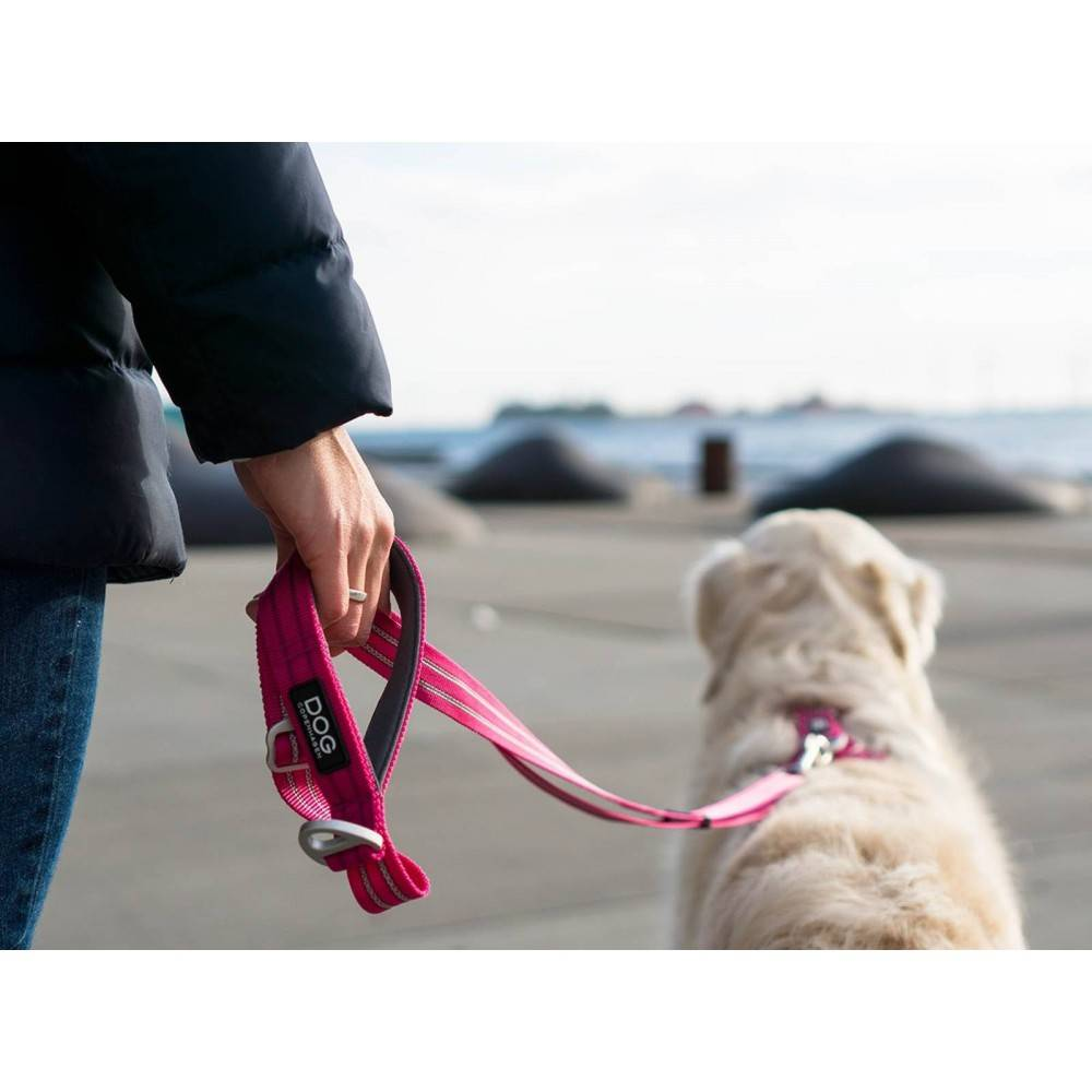 DOG Copenhagen Urban Freestyle™ Leash Dog