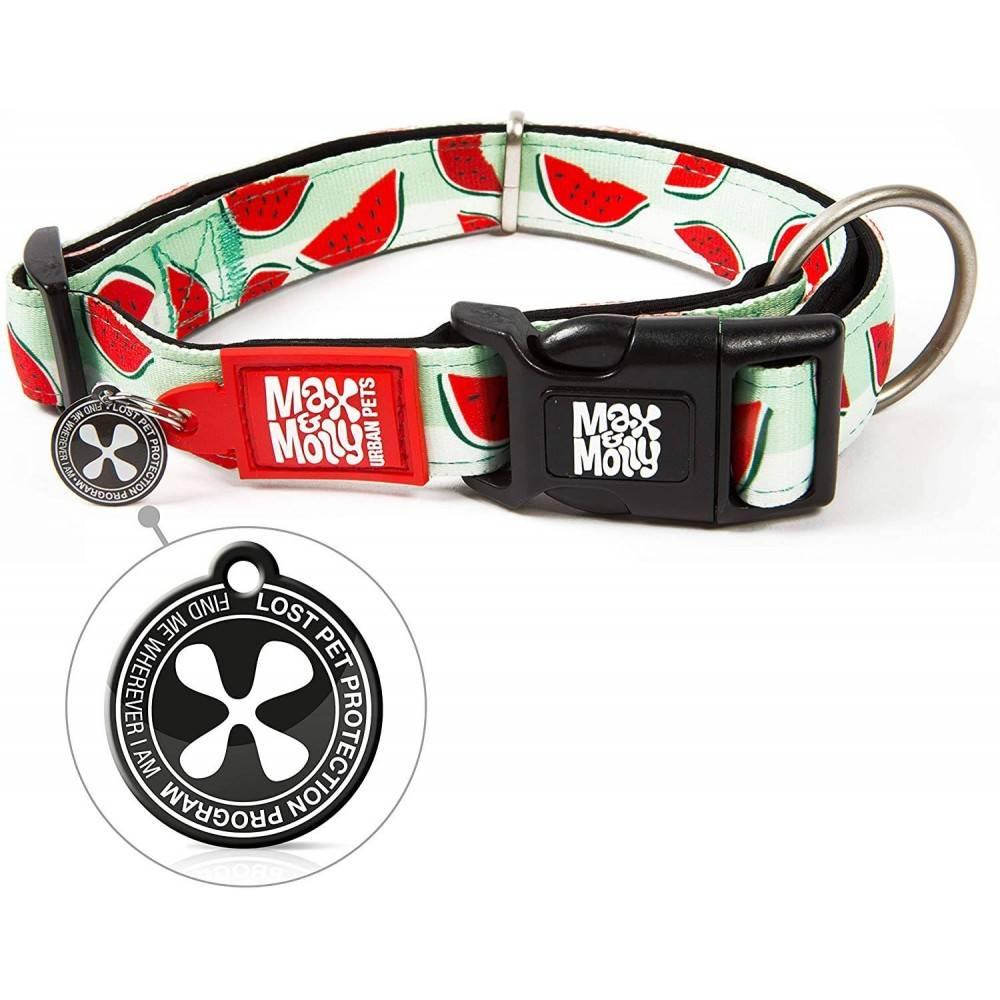 Max & Molly Watermelon. Dog Collar
