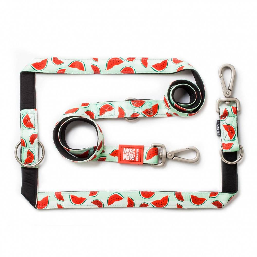 Max & Molly Watermelon. Multifunctional Dog Leash