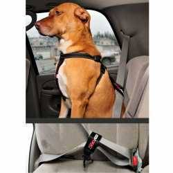 EzyDog Car Restraint